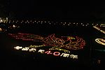File:Illuminated Geoglyph in Asuka2012.jpg