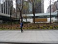 Images taken from the window of an westbound 504 King streetcar, 2015 05 05 A (13).JPG - panoramio.jpg