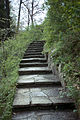 JamesGardens steps.jpg