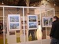 Japan Expo Sud - Ambiances - 2012-03-04- Ganbare Japan - P1350622.jpg
