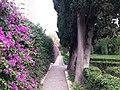 Jardín de Monforte 27.jpg