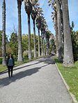 Jardim Botânico (27155369556).jpg