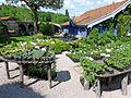 Jardin de Berchigranges (36).jpg