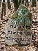 Jewish Cemetery Kock IMGP2352.jpg
