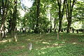 Jewish cemetery in Uhříněves 18.JPG
