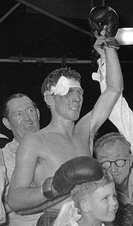 Australian boxer