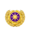Joint Duty Service Lapel Button.png