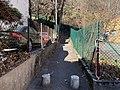 Jonction rue de la Sauvagère et montée de la Sauvagère (escalier) à Lyon.jpg