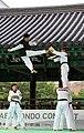 KOCIS Korea Taekwondo Namsan 35 (7628114566).jpg
