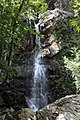 Kaledonia Waterfall Trail, Cyprus - panoramio (6).jpg