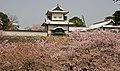 Kanazawa castle (2443684181).jpg