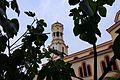 Katedrale e Shën Gjergjit në Fier 02.jpg
