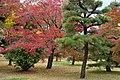 Katsura Rikyu (3263780873).jpg