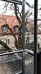 Katzenauslauf auf der Terrasse 20.jpg