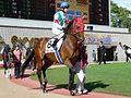 Ken-Tanaka(Jockey).jpg