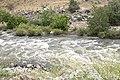 Kern River14.jpg