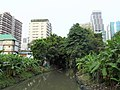 Khlong in Khlong Toei District 3.jpg