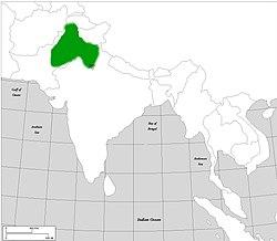 Khokhar Empire conquests under Jasrath Khokhar, note: Delhi was temporarily ruled.