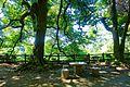 Kitanomaru Park - Tokyo, Japan - DSC04849.jpg
