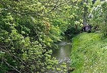 Kopidlno, Mrlina River.jpg