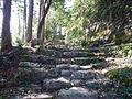 Kumano Kodo Dainichigoe World heritage23.JPG
