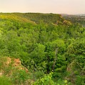 La Crosse, WI, USA - panoramio.jpg