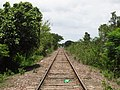 La vía del mitre a la altura de Los Vera, tucuman - panoramio.jpg