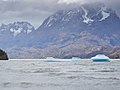 Lago Grey-CTJ-IMG 7154.jpg