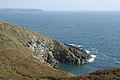 Landewednack, Enys Head - geograph.org.uk - 982289.jpg