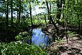 Landschaftsschutzgebiet Gütersloh - Isselhorst - An der Lutter (22).jpg