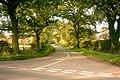 Lane to Hilderstone - geograph.org.uk - 280459.jpg