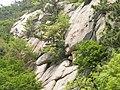 Laoshan, Qingdao, Shandong, China - panoramio (32).jpg