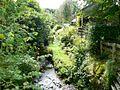 Leafy stream - geograph.org.uk - 554967.jpg