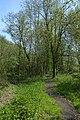 Leiemeersen , typisch rivierlandschap te Sint-Martens-Latem - 372212 - onroerenderfgoed.jpg