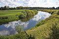 Leine in Bothmer (Schwarmstedt) IMG 4528.jpg
