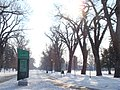 Liberty Park in the winter, Salt Lake City UT, USA - panoramio.jpg