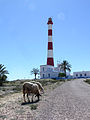 Lighthouse on cape Ras Tourgueness-sky walker.jpg