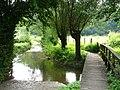 Limburgs landschap.jpg