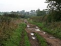 Lings Lane, Keyworth - geograph.org.uk - 262107.jpg