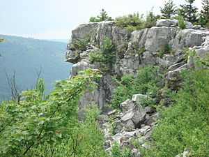 Dolly Sods Wilderness - Lion's Head Rock