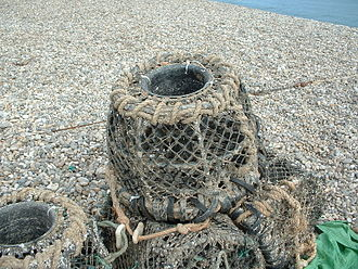 Timeline of United States inventions (before 1890) - An example of a lobster trap used in Devon, England