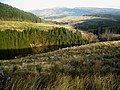 Loch Ard Forest - geograph.org.uk - 1056373.jpg
