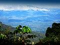 Los guaduales Balboa Cauca - panoramio.jpg