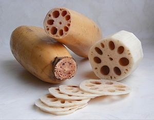 Lotus rhizome (Nelumbo nucifera)