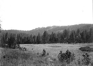 McGurk Meadow - Lower McGurk Meadow. Ostrander Rocks in background.