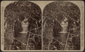 Lower tunnel cascade, Fall Creek, from Robert N. Dennis collection of stereoscopic views.png