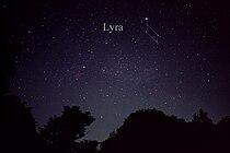 LyraCC.jpg