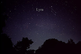 The constellation Lyra as it rises in the east on May and June evenings.