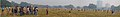 Maidan Panorama1.jpg