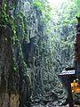 Malaysia - 031 - KL - Batu Caves Hindu temple (3509746627).jpg